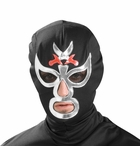 Ray Mysterio Costume Mask