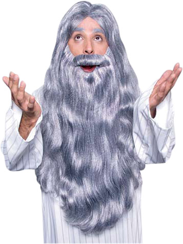Deluxe Wizard Wig & Beard Set