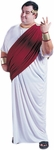 Plus Size Ceasar Costume