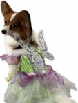 Dog Tinker Bell Costume