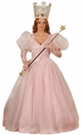 Good Witch Deluxe Costume