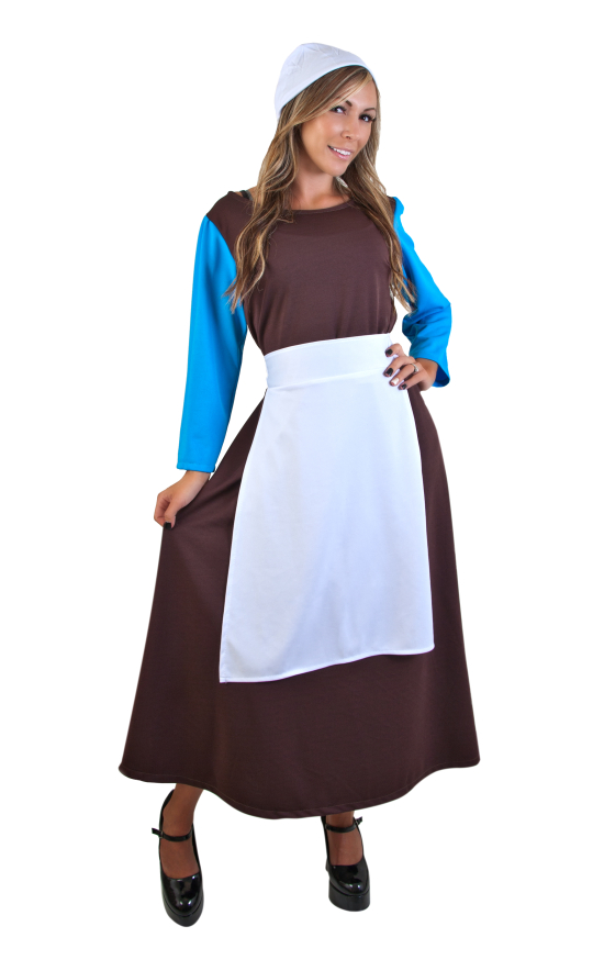 Adult Cinderella Peasant Costume