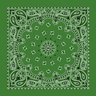 Lime Green Paisley Bandanas Wholesale