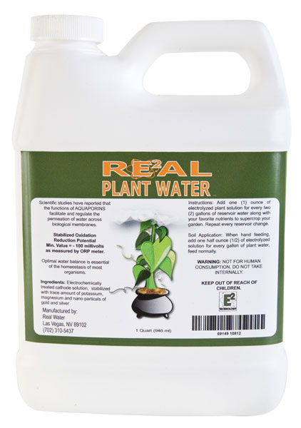 Real Plant Water - Alkaline Water
