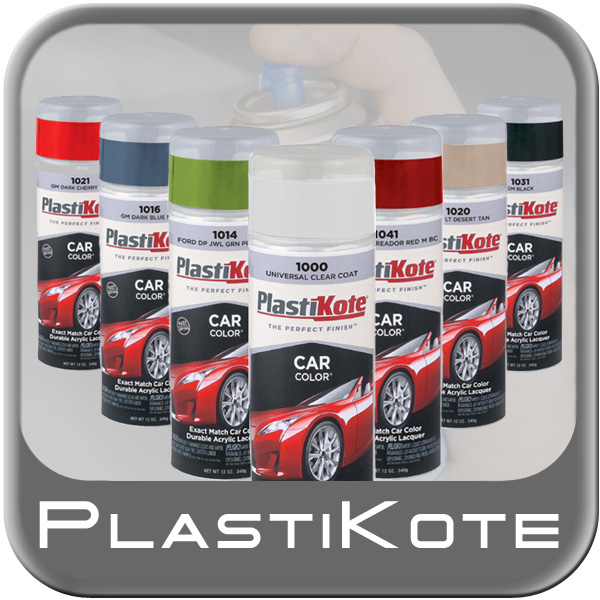 Plasti-Kote Car Color® Clear Coat Paint