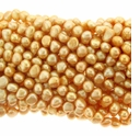 Golden Potato Freshwater Pearl 5-6mm Bead Strand