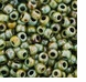 Opague Luster Transparent Green Seed Bead Size 11/0