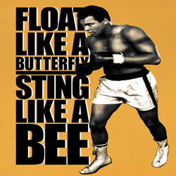 Muhammad Ali Shirt Like A Bee Adult Orange Tee T-Shirt