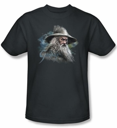 The Hobbit Shirt Movie Unexpected Journey Gandalf Adult Charcoal Tee