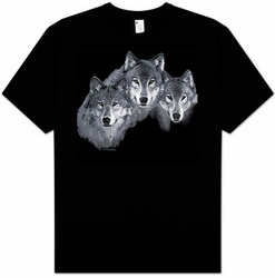 Wolf T-shirt Wolf Trio Beautiful Wildlife Portrait Adult Tee Shirt