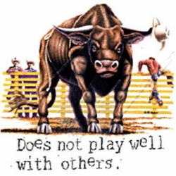 Funny Bull T-shirt - Doesn't Play Well With Others