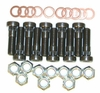 Mancini Racing Housing End Stud, Washer & Nut Kit