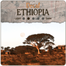 Decaf Ethiopia: Longberry Harrar (5lb Bag)