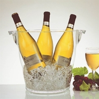 Grand Acrylic Oversized Wine & Ice Bucket