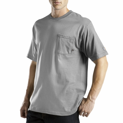 Dickies Men's T-Shirt: (WS417T)