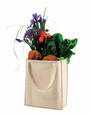 econscious Shopping Bag: Nonwoven Grocery (EC8075)