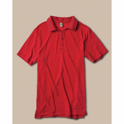 alternative Men's Polo Shirt: (AA1953)