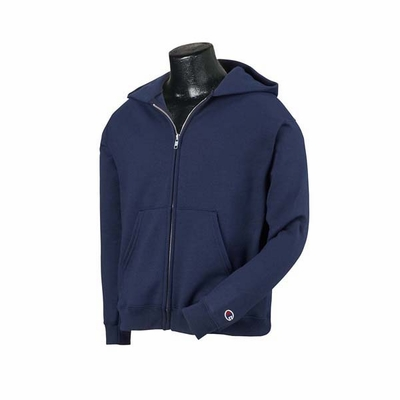 Champion Youth Sweatshirt: (S890)