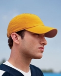 Champion Cap: 100% Cotton Brushed 6-Panel (C4001)
