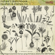 Nature's Sketchbook Brushes & Stamps 1