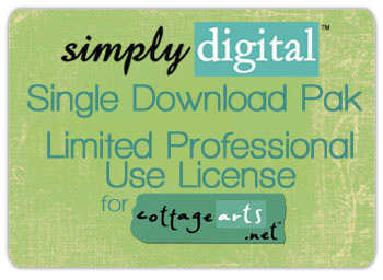 Convert Download Pak to Limited Professional Use
