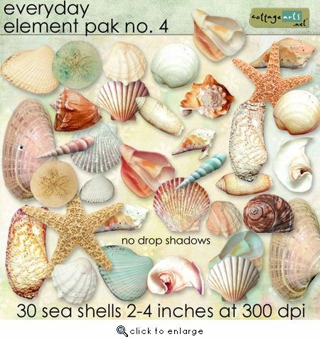 Everyday Element Pak 4 - Sea Shells