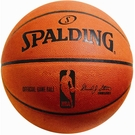 Autographed NBA Basketballs