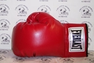 Everlast Vinyl Autograph Boxing Glove - Single Left glove