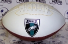 NFL Team Logo Micro Size Football