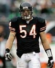 Brian Urlachers - Autographed Chicago Bears 16x20 Photo