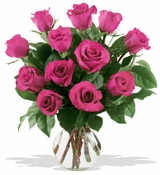 12 Hot Pink Roses - Designs East Florist Dallas