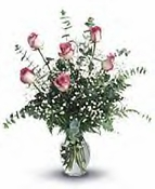 Roses And Romance - Bi color roses
