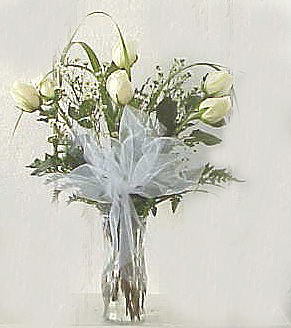 1/2 dozen white roses - Designs East Florist Dallas