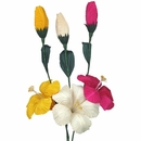 Mexican Corn Husk Hibiscus Flowers - Set of 6