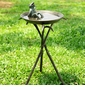 Cool Frog Birdbath by SPI Home