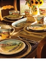 Vietri Siena Country Dinnerware