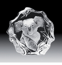 Mats Jonasson Maleras Swedish Crystal Koala