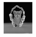 Mats Jonasson Maleras Swedish Crystal Lion Cub