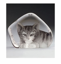 Mats Jonasson Maleras Swedish Safari Crystal Cat, Large Grey