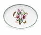 Portmeirion Botanic Garden Oval Plate / Steak Platter