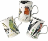 Roy Kirkham Garden Birds Mugs - Set of Three (Lancaster)