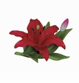 Andrea by Sadek Small Lily Red Porcelain Flower Figurine