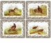 Pimpernel Spode Woodland Set of 4 Rectangular Place Mats - Birds