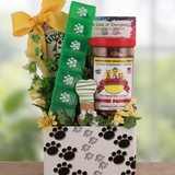 Paw Print Dog Get Well Gift