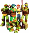 Teenage Mutant Ninja Turtles Toys & Action Figures
