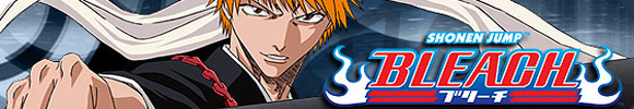 Bleach Figures, Collectibles & Card Game