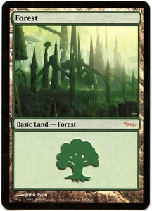Magic the Gathering Arena Promo Card #5 Forest