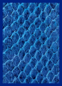 Legion Art Card Supplies STANDARD Card Sleeves Blue Dragon Hide [50 Sleeves]