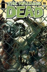 Image Comic Books The Walking Dead #16 Condition - Fine