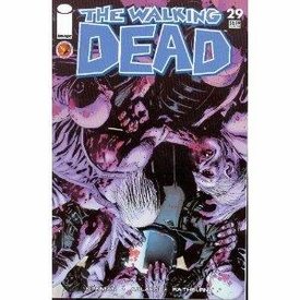 Image Comic Books The Walking Dead #29 Condition - Fine